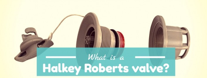 What is a Halkey-Roberts valve?