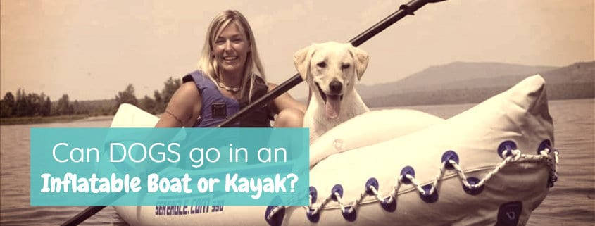 Can dogs go in an inflatable boat or kayak?