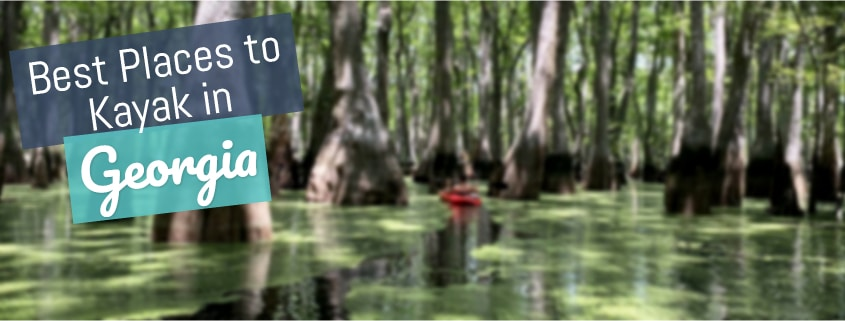 Best Places To Kayak In Georgia Usa